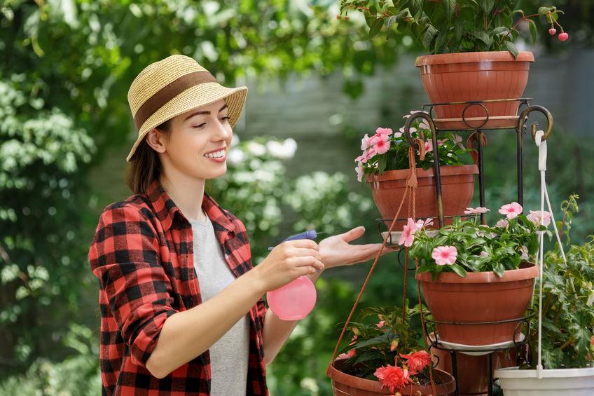 zena zahrada
