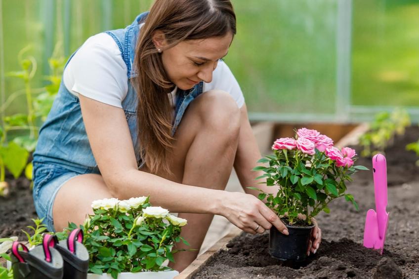 Zahradniceni