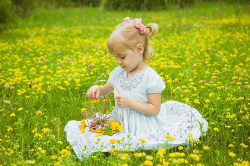 Holcicka sbira kytky