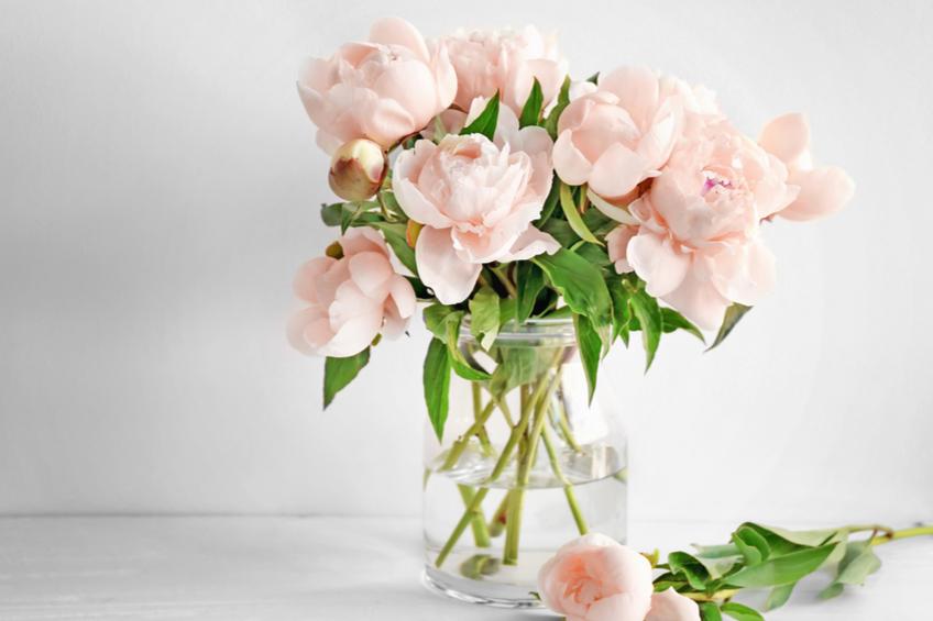 Rezane kvetiny